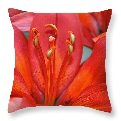 Flower Throw Pillow featuring the photograph Lily Eyes by Susan Herber