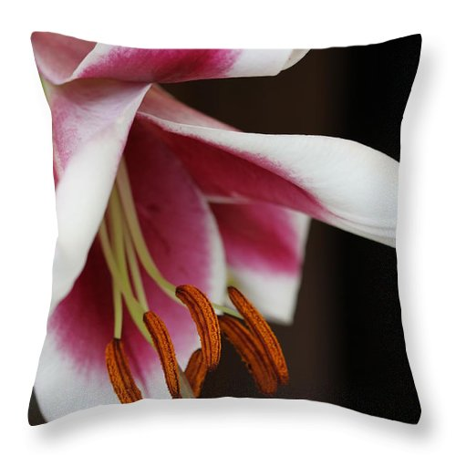 Lily Throw Pillow featuring the photograph Lily II by Christiane Schulze Art And Photography
