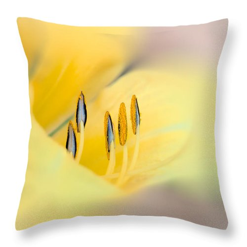 Flower Throw Pillow featuring the photograph Lily Impressions by Bob Orsillo