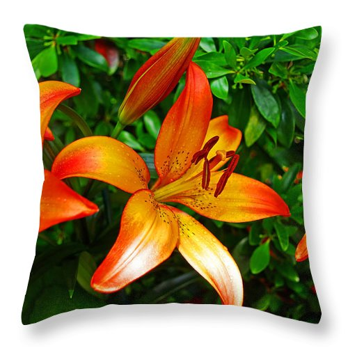 Lily Throw Pillow featuring the photograph Lily by Rich Walter