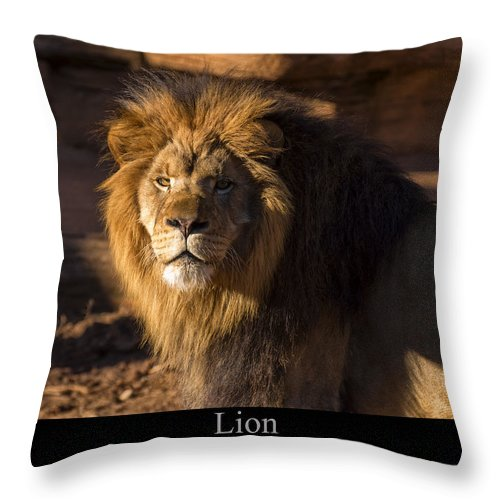Class Room Posters Throw Pillow featuring the digital art Lion by Chris Flees