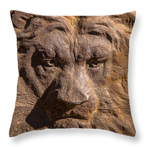 Lion Throw Pillow featuring the photograph Lion Wall by Garry Gay