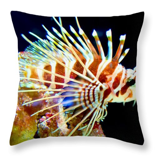 Lionfish Throw Pillow featuring the photograph Lionfish 1 by Dawn Eshelman