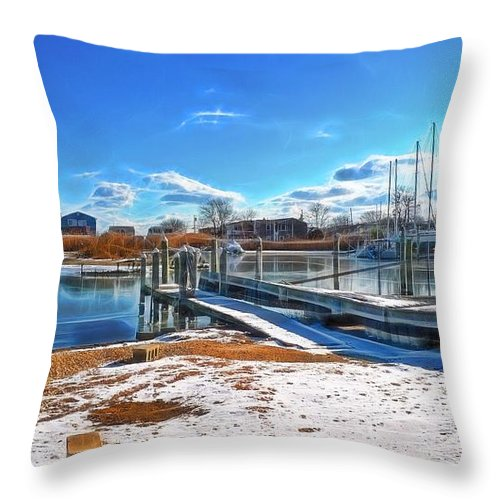 Water Throw Pillow featuring the photograph Little Beach Cove by Tony Ambrosio