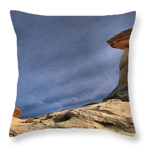 Stud Horse Point Throw Pillow featuring the photograph Little Brother by Adam Jewell