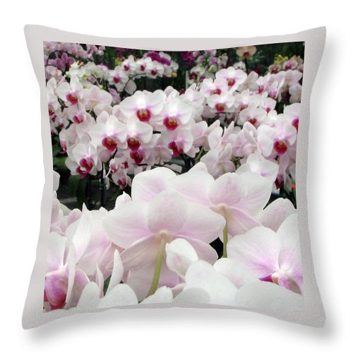 Orchid Throw Pillow featuring the photograph Little Faces by Debi Singer