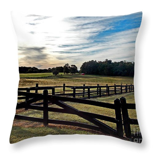 Scenic Tours Throw Pillow featuring the photograph Little Red Shed by Skip Willits
