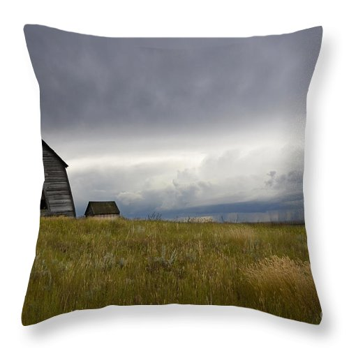 Homestead Throw Pillow featuring the photograph Little Remains by Bob Christopher