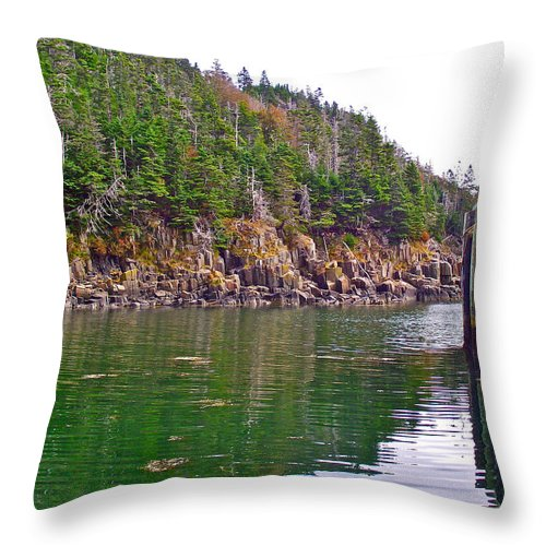 Little River In Digby Neck Throw Pillow featuring the photograph Little River In Digby Neck-ns by Ruth Hager