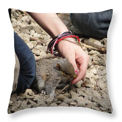 Squirrel Throw Pillow featuring the photograph Little Squirrel by Tiffany Erdman
