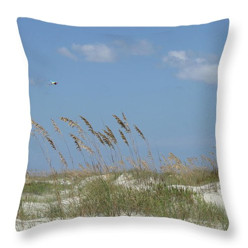 Landscape Throw Pillow featuring the photograph Little Talbot Kite by Ellen Meakin
