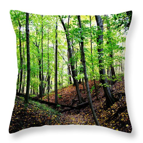 Camp Libby Throw Pillow featuring the photograph Little Valley 2 by Michael Arend