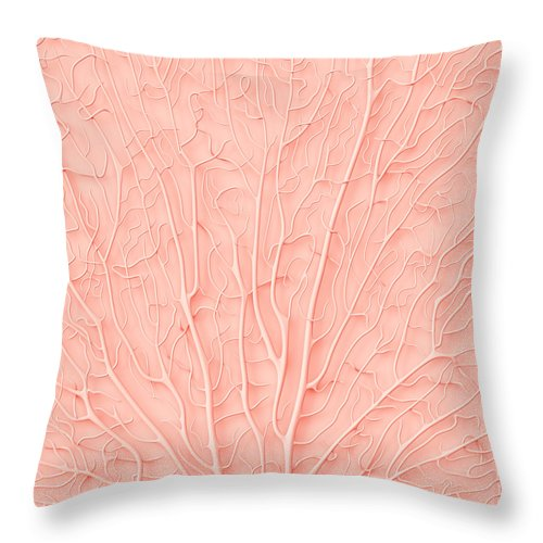Empty Throw Pillow featuring the photograph Living Coral Color Of The Year 2019 by Artjafara