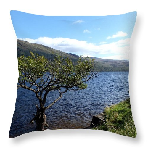 Tree Throw Pillow featuring the photograph Loch Lomond Tree by John Topman