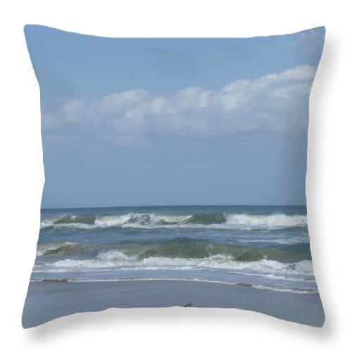 Landscape Throw Pillow featuring the photograph Lone Bird Walking by Ellen Meakin