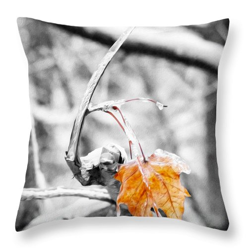 Leaf Throw Pillow featuring the photograph Lone Leaf by Tracy Winter