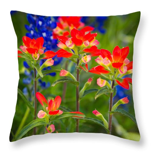 America Throw Pillow featuring the photograph Lone Star Blooms by Inge Johnsson