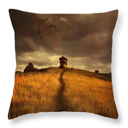 House On The Field Throw Pillow featuring the photograph Lonely House On The Hill by Jaroslaw Blaminsky