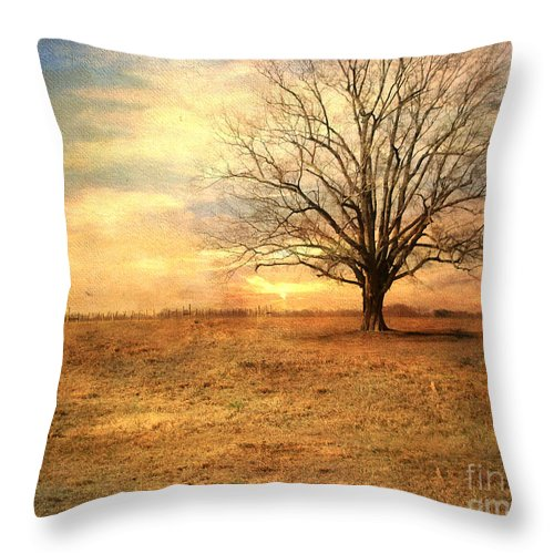 Landscape Throw Pillow featuring the photograph Lonely Tree At Sunset by Jai Johnson