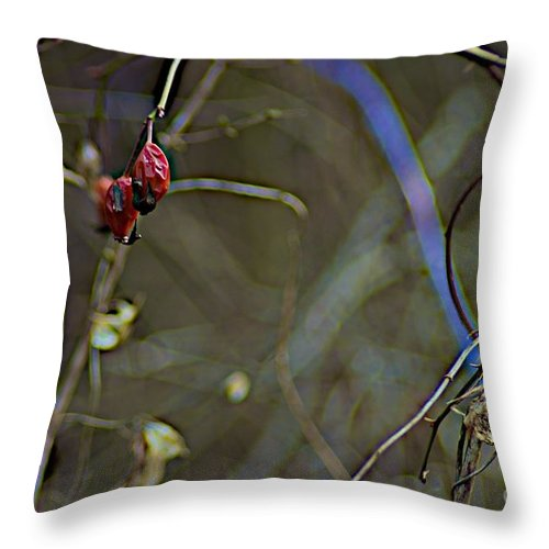 Abstract Throw Pillow featuring the photograph Long Point Walk by Joseph Yarbrough