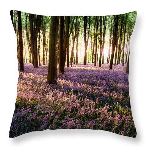 Flower Throw Pillow featuring the photograph Long Shadows In Bluebell Woods by Simon Bratt Photography LRPS