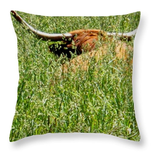 Bull Throw Pillow featuring the photograph Longhorn by April Patterson