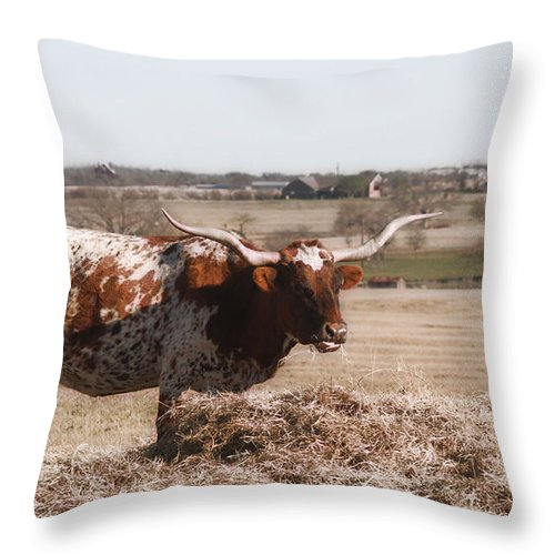 Longhorn Throw Pillow featuring the photograph Longhorn Life by Valerie Loop