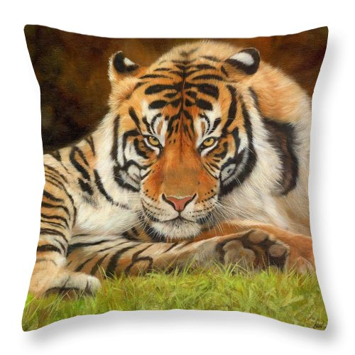 Tiger Throw Pillow featuring the painting Look Into My Eyes by David Stribbling