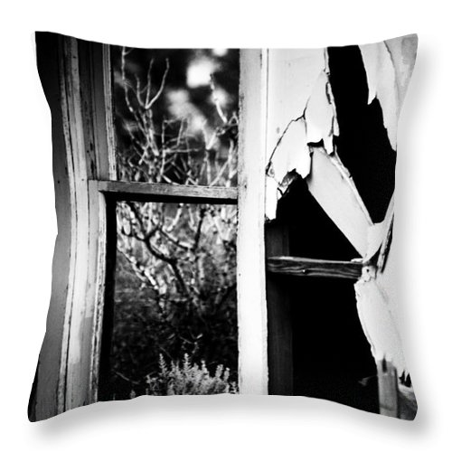 Black Throw Pillow featuring the photograph Look Out The Window There Beauty Is by Jessica Shelton
