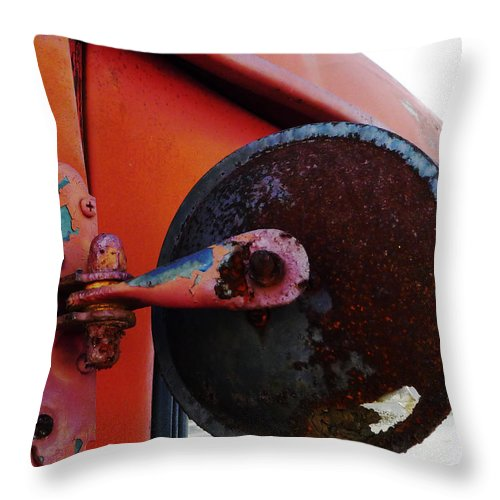 International Throw Pillow featuring the photograph Look Round by Richard Reeve