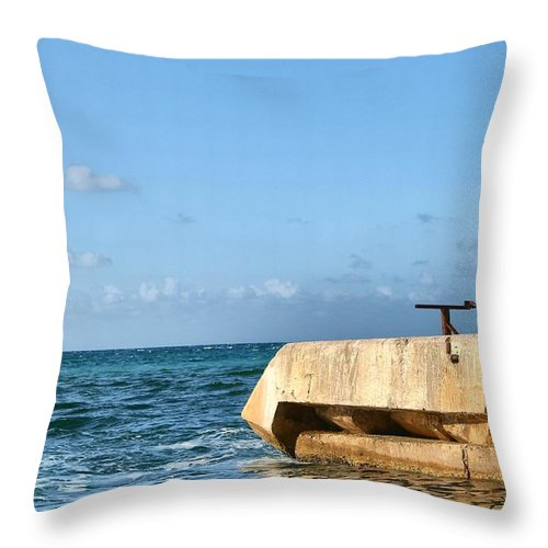 Water Throw Pillow featuring the photograph Looking Out To Sea by Debbie Levene