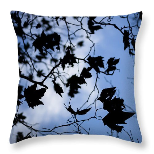 Leaves Throw Pillow featuring the photograph Looking Up by Heather Applegate