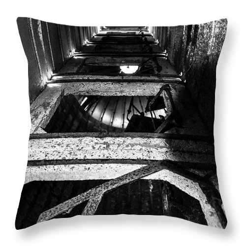 Farm Throw Pillow featuring the photograph Looking Up by Pamela Taylor