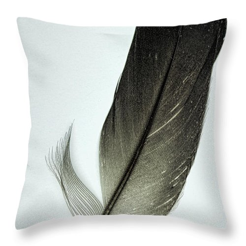 Feather Throw Pillow featuring the photograph Loon Feather by John Crothers