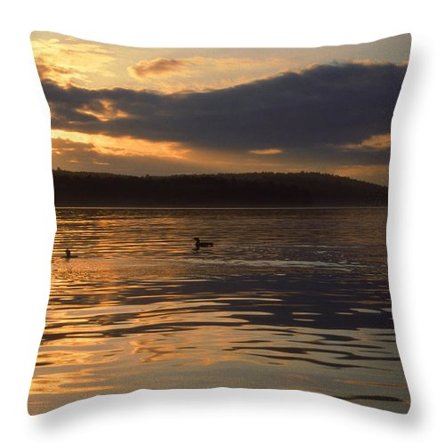 Scenic Tours Throw Pillow featuring the photograph Loon Lake by Skip Willits