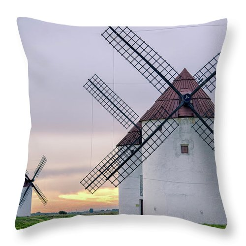 Environmental Conservation Throw Pillow featuring the photograph Los Gigantes Del Quijote by Eddy Photo