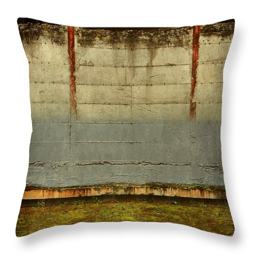 Lost Throw Pillow featuring the photograph Lost And Empty by Patricia Strand