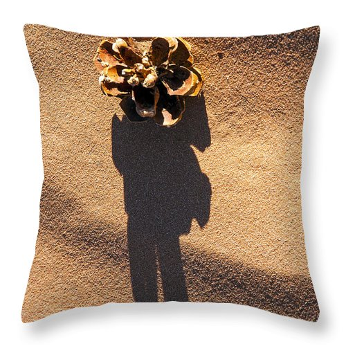 Monument Valley Utah Pine Cone Cones Sand Shadow Shadows Throw Pillow featuring the photograph Lost Pine by Bob Phillips