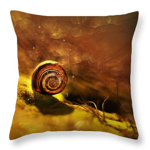 Lost Throw Pillow featuring the photograph Lost Shell by Jaroslaw Blaminsky