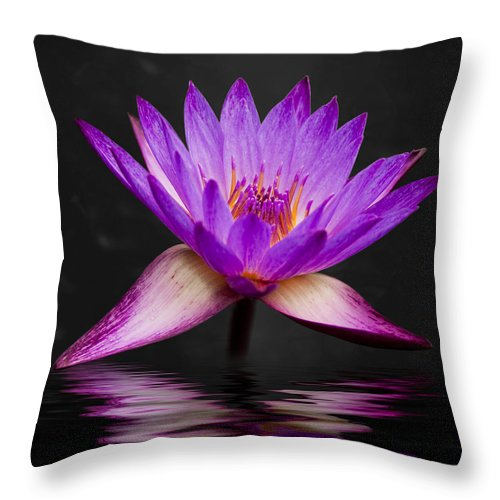 3scape Throw Pillow featuring the photograph Lotus by Adam Romanowicz