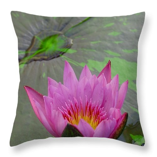 Lotus Throw Pillow featuring the photograph Lotus Blossom by Suzanne Gaff