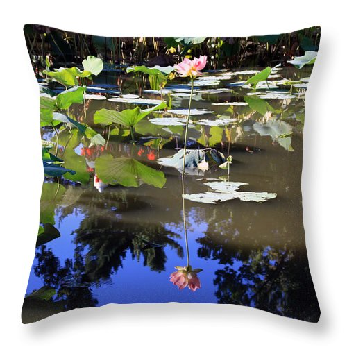 Garden Pond Throw Pillow featuring the photograph Lotus Reflection by John Lautermilch