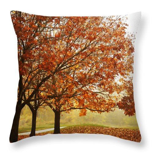 Louisville Throw Pillow featuring the photograph Louisville Fall 1 by Marilyn Hunt