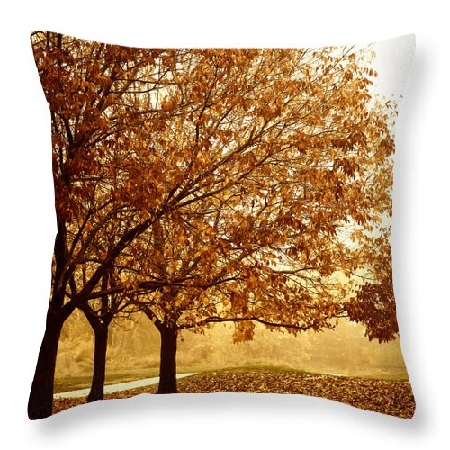 Louisville Throw Pillow featuring the photograph Louisville Fall 2 by Marilyn Hunt