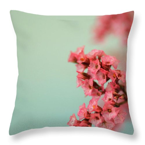 Pink Flower Light Blue Background Love Air Beauty Superb Fine Art Close Up Macro Nature Throw Pillow featuring the photograph Love Is In The Air by AR Annahita