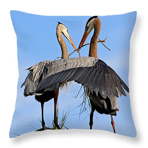 Wetlands Throw Pillow featuring the photograph Love Is In The Air by Ira Runyan