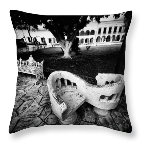 Black And White Throw Pillow featuring the photograph Love Seat by Robert McCubbin