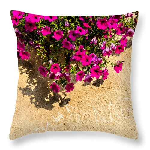 Herbs Throw Pillow featuring the photograph Love Signs by Sotiris Filippou