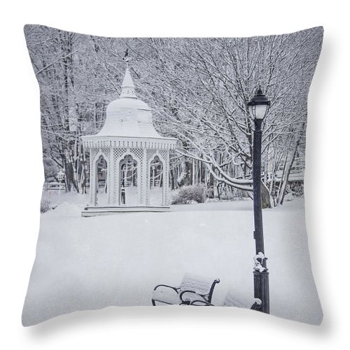 Bar Harbor Throw Pillow featuring the photograph Love Through The Winter by Evelina Kremsdorf