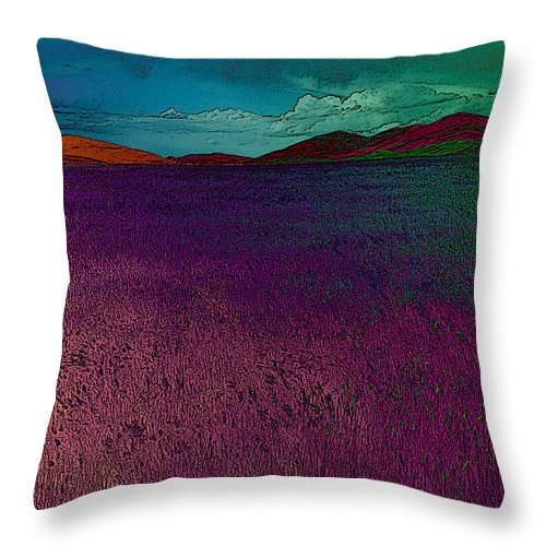 Field Throw Pillow featuring the photograph Loveland by David Pantuso